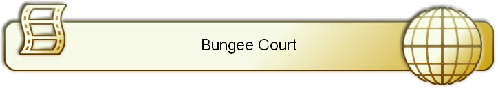 Bungee Court